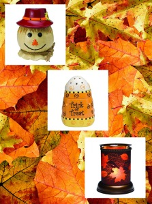 Awesome Fall Warmers
